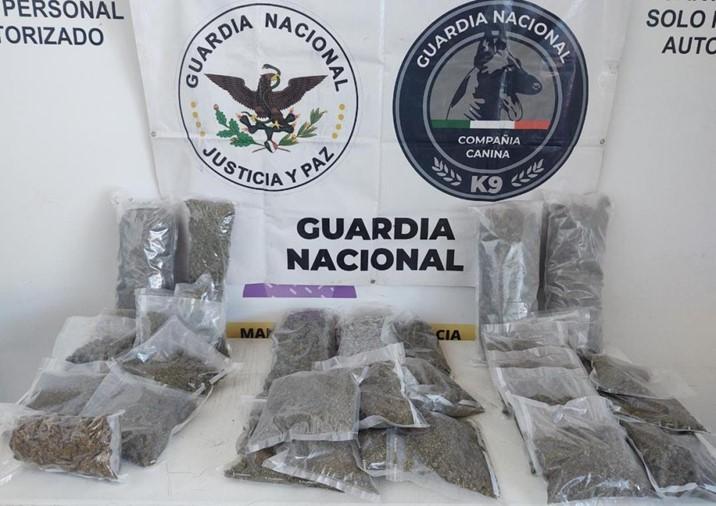 Localiza GN más de 11.5kilos de droga en paquetería de Culiacán